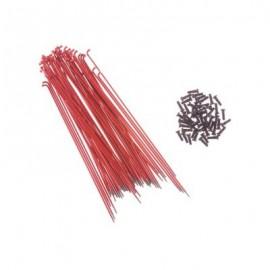 PRIMO Set spite si nipluri 184mm rosu (50 buc/set)